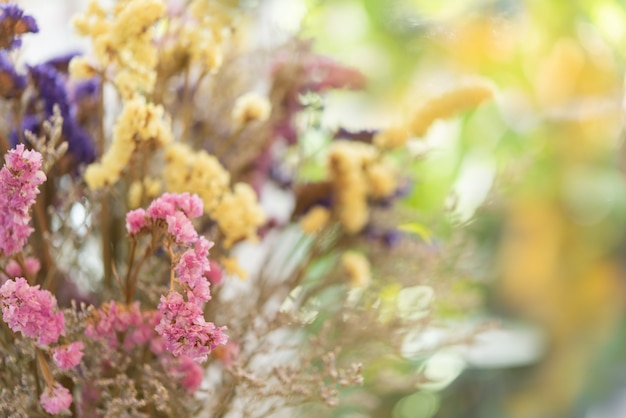 Schöner trockenblumenblumenstrauß mit buntem weichem bokeh hintergrund