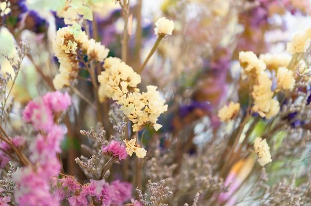 Schöner trockenblumenblumenstraußhintergrund