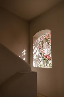 Schöner tropischer pflanzenbaum mit roten blumen im beigen gebäudefenster mit sonnenlichtschatten.