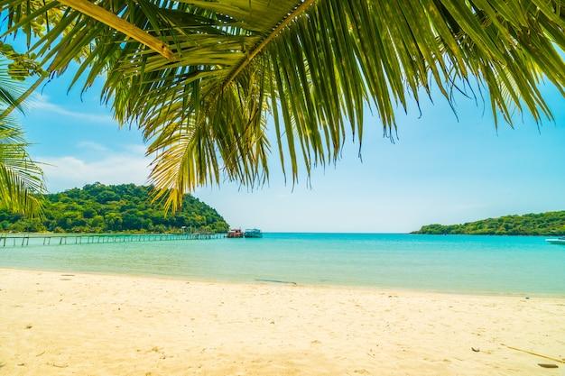 Schöner tropischer strand und meer mit kokosnusspalme in der paradiesinsel