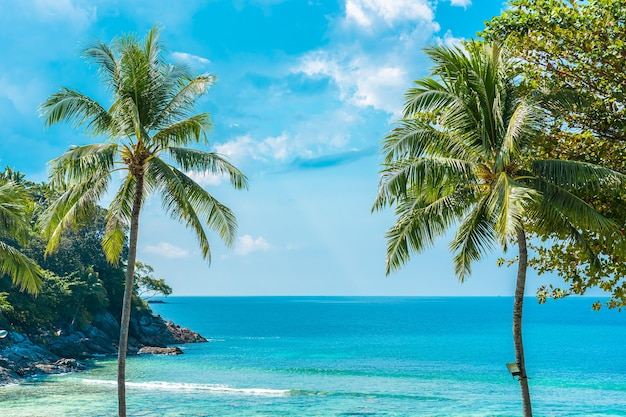 Schöner tropischer strandmeeresozean mit kokosnuss und anderem baum um weiße wolke auf blauem himmel