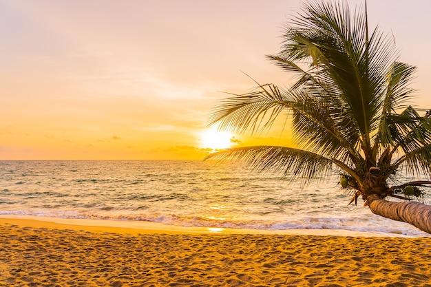 Schöner tropischer strandmeeresozean um kokospalme bei sonnenuntergang oder sonnenaufgang für urlaubsreisehintergrund