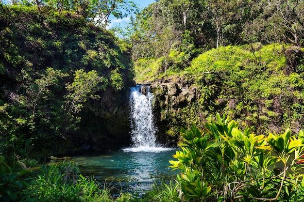 Schöner tropischer wasserfall in hawaii