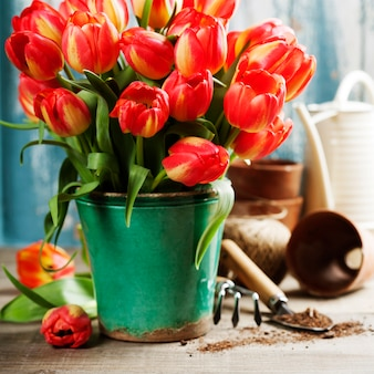 Schöner tulpenstrauß und gartengeräte auf holztisch