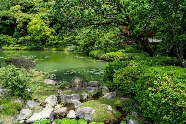 Schöner üppiger grüner japanischer garten mit grünen abstufungen