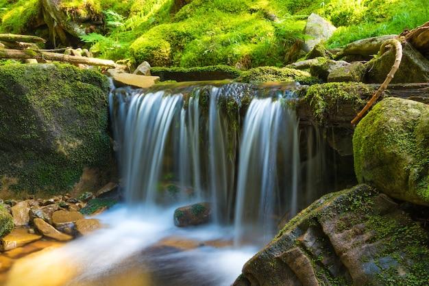 Schöner wasserfall im grünen wald. kaskade von bewegungswasser