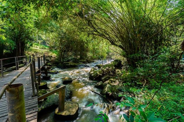 Schöner wasserfall in natur