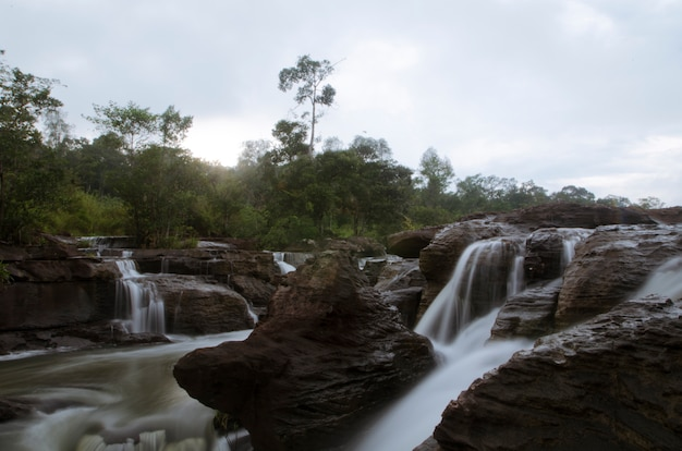 Schöner wasserfallstrom, der in wald fließt.