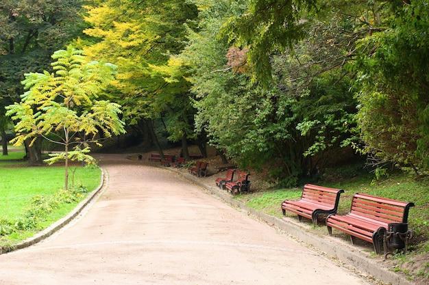 Schöner weg im park