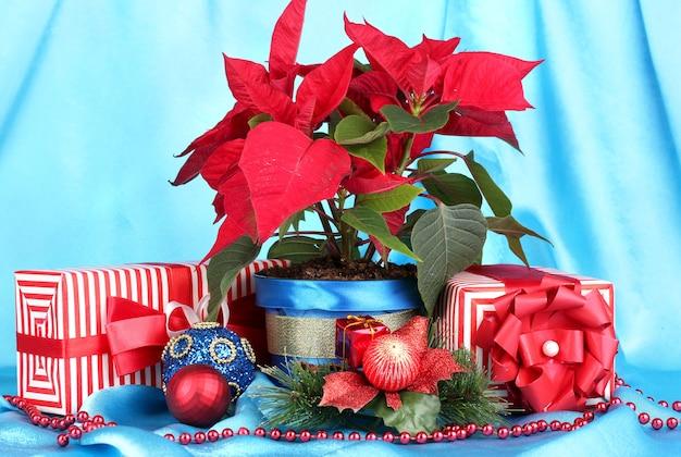 Schöner weihnachtsstern mit weihnachtskugeln und geschenken auf blauer stoffoberfläche