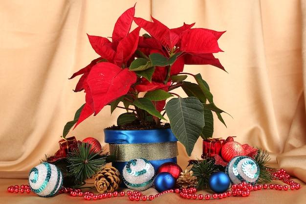 Schöner weihnachtsstern mit weihnachtskugeln