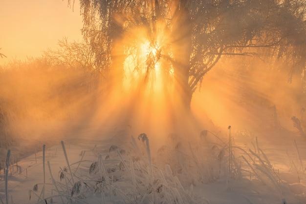 Schöner wintersonnenaufgang auf dem eisigen fluss