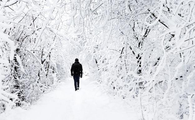 Schöner winterwald mit menschlicher silhouette