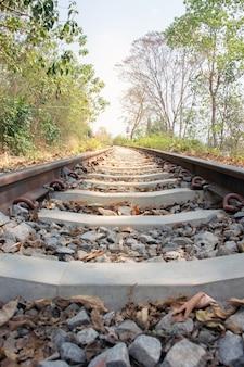 Schönes foto von eisenbahnlinien