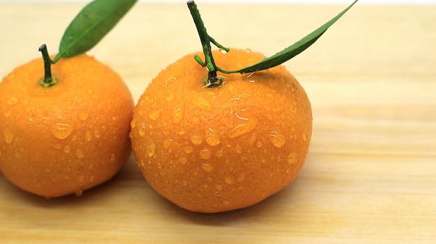 Schönes, frisches orange fotoshooting