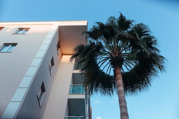 Schönes gebäude und palmen gegen den himmel