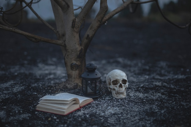 Schönes halloween-konzept mit bannbüchern und dem schädel