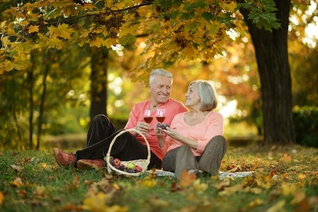 Schönes kaukasisches älteres paar im park im herbst