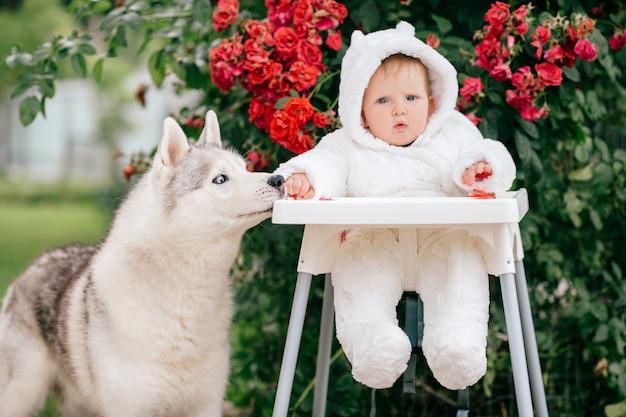 Schönes kind im bärenkostüm, das im hochstuhl sitzt und mit schönem welpen spielt.