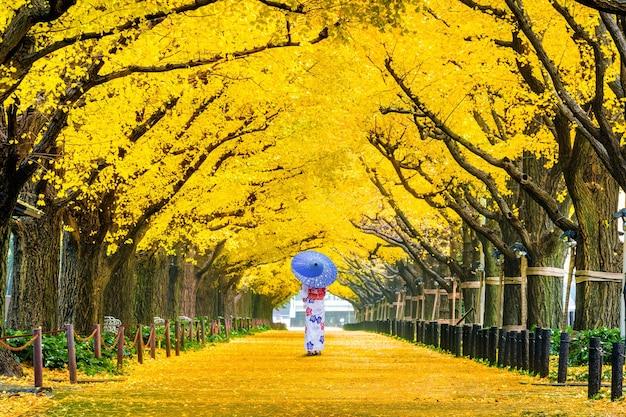 Schönes mädchen, das japanischen traditionellen kimono an der reihe des gelben ginkgobaums im herbst trägt. herbstpark in tokio, japan.