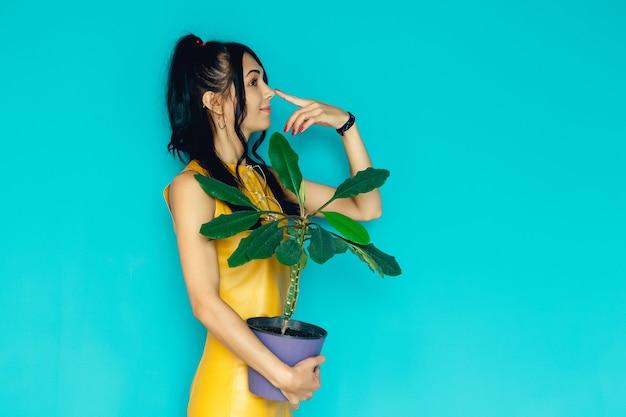 Schönes mädchen hält blume im topf auf blauem hintergrund frau hält topfpflanzen
