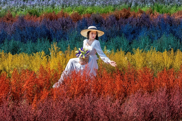 Schönes mädchen im weißen kleid, das in den cutter regenbogenblumenfeldern, chiang mai sitzt
