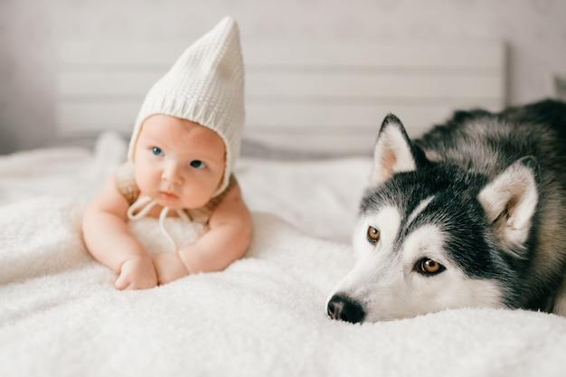 Schönes neugeborenes, das mit huskywelpen auf bett liegt.