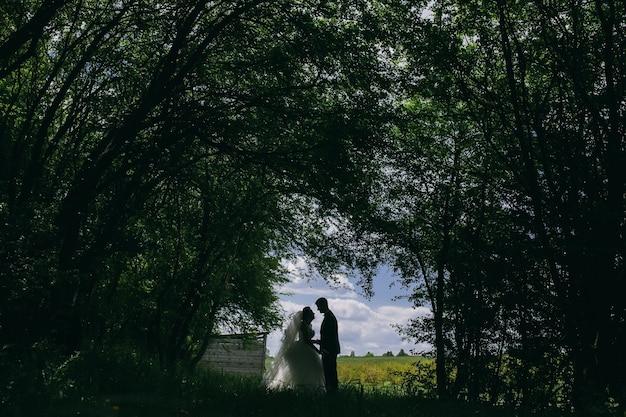 Schönes paar in den wäldern auf einem hintergrund der waldrodung auf dem feld