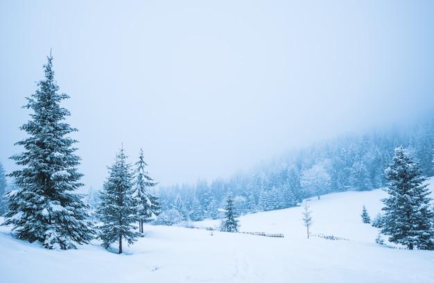 Schönes panorama der bergzäune