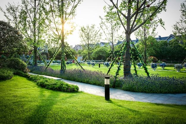 Schönes panorama des grünen stadtparks im morgengrauen