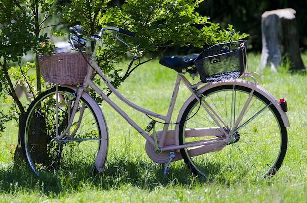 Schönes rosa fahrrad, das durch einen baum in der mitte eines grasbedeckten feldes geparkt wird