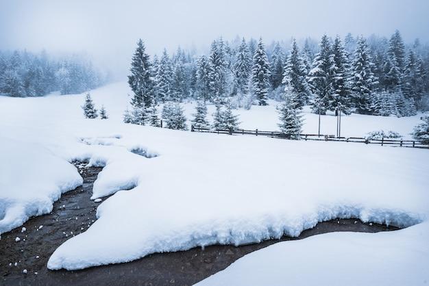 Schönes schneepanorama einer schneeverwehung
