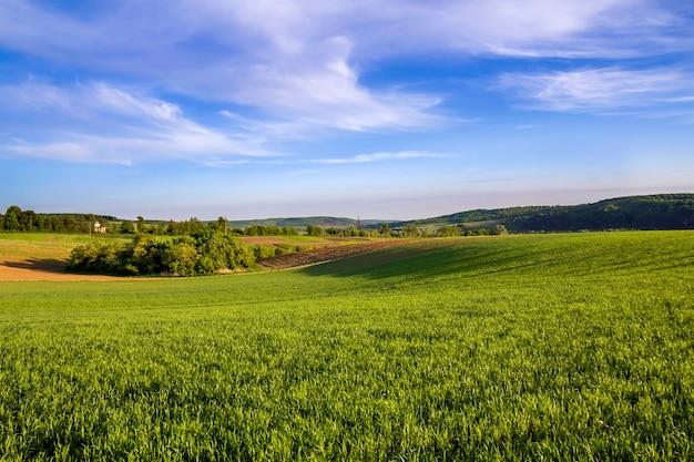 Schönes weites panorama von gepflügten und grünen feldern mit wachsendem weizen unter klarem hellblauem himmel auf friedlichem dorf und entfernten hügeln. landwirtschaft und landwirtschaftskonzept.