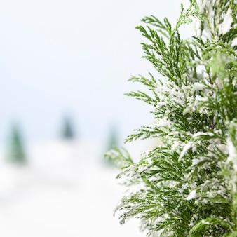 Schönes winterkonzept mit kopierraum