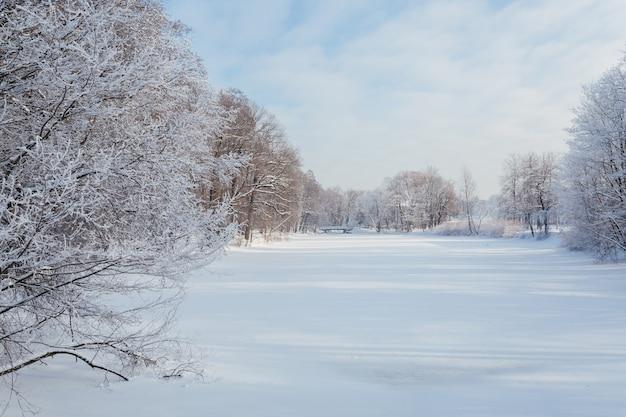 Schönes winterpanorama des zugefrorenen sees im park.