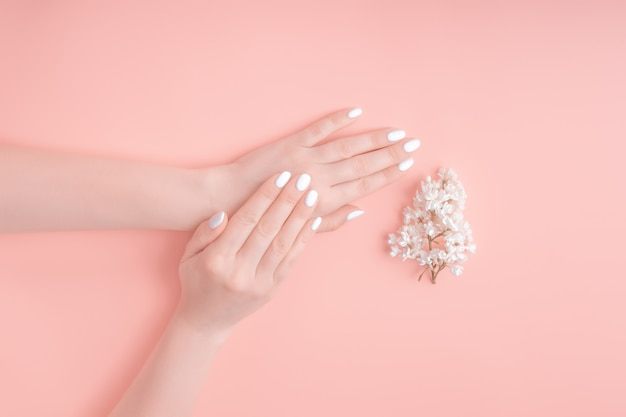 Schönheitshände einer frau mit weißen blumen liegen auf tisch, rosa hintergrund. naturkosmetikprodukt und handpflege, feuchtigkeitscreme und faltenreduzierung, hautpflege