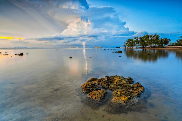 Schönheitssonnenuntergang und magrovenbaum am strand von tanjung pinggir