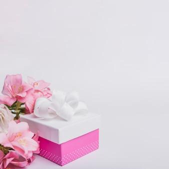 Schöne Frischwasserlilie und verziertes Geschenk auf weißem Hintergrund