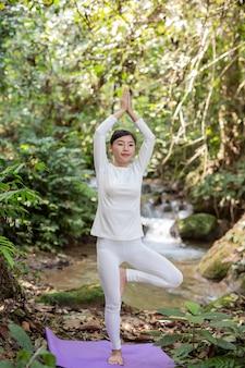 Schöne Mädchen spielen Yoga im Park