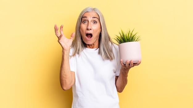 Schreien mit erhobenen händen, wütend, frustriert, gestresst und verärgert, wenn man eine zierpflanze hält