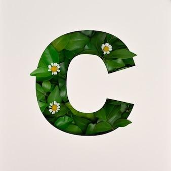 Schriftdesign, abstrakte alphabetschrift mit blättern und blume, realistische blatttypografie - c.