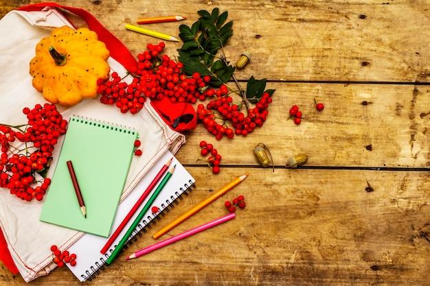 Schulbriefpapier mit kürbissen, ebereschenbeeren
