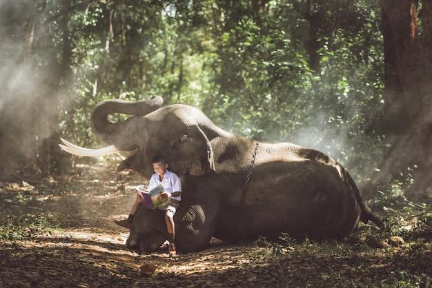 Schuljunge, der mit seinem freund elefanten im dschungel studiert
