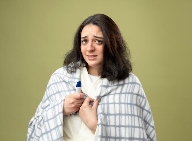 Schwaches junges kaukasisches krankes mädchen, das eine robe trägt, die in plaid eingewickelt ist, das thermometer hält, das plaid betrachtet, das kamera lokalisiert auf olivgrünem hintergrund betrachtet