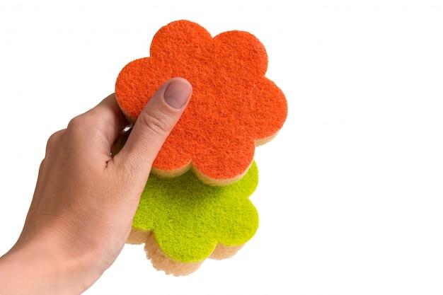Schwämme zum abwaschen von geschirr in einer weiblichen hand auf einem weißen isolierten