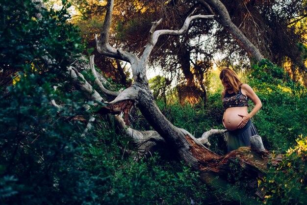 Schwangere frau, die unter bäumen und natur geht.