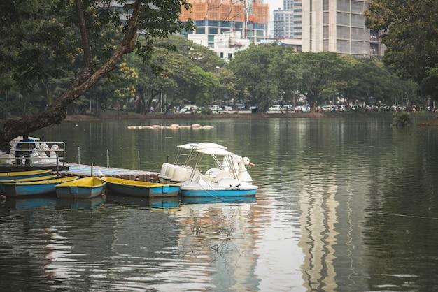 Schwanpaddelboote im lumphini park, bangkok