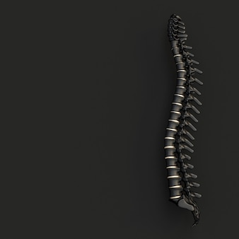 Schwarz-goldenes rückgrat auf einem schwarzen, flachen lay-stil
