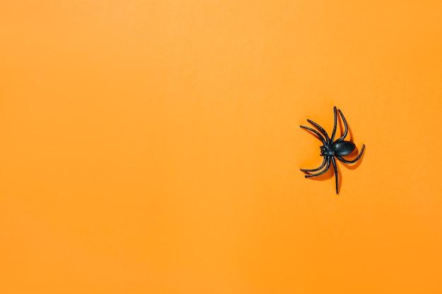 Schwarze dekorative spinne mit langen beinen