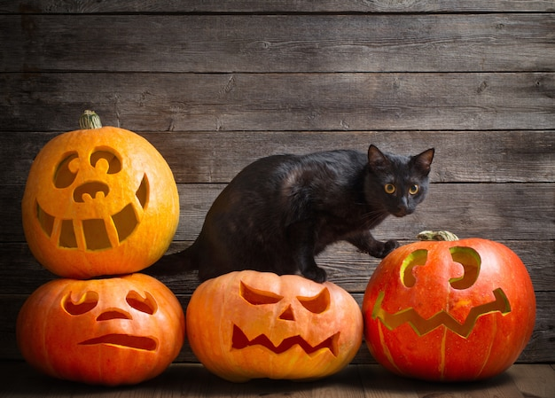 Schwarze katze mit orange halloween-kürbis auf hölzernem hintergrund